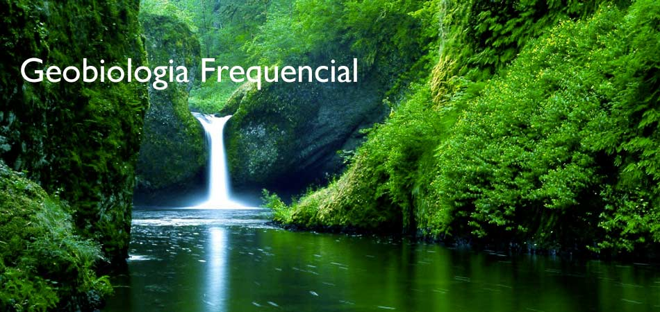 Geobiologia Frequencial